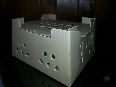 5 Cardboard Chick Shipping Boxes Holds 25 Day Old Chicks, Ducks or Pheasant