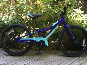 Cannondale kid's bike