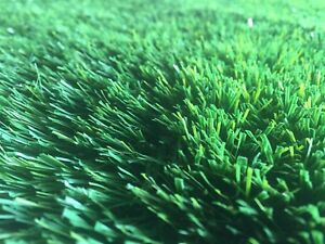 Mats / Rug - Synthetic Grass / Artificial Turf