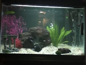 Fish tank accessories and tank for sale