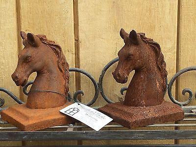 Schöne Pferdebüste , Pferdekopf ,Pferd ,Pferdefreund ,Reiter, Pferdestall .