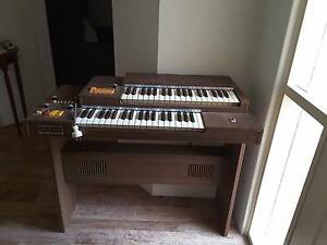 Electric Organ Ravenswood Murray Area Preview