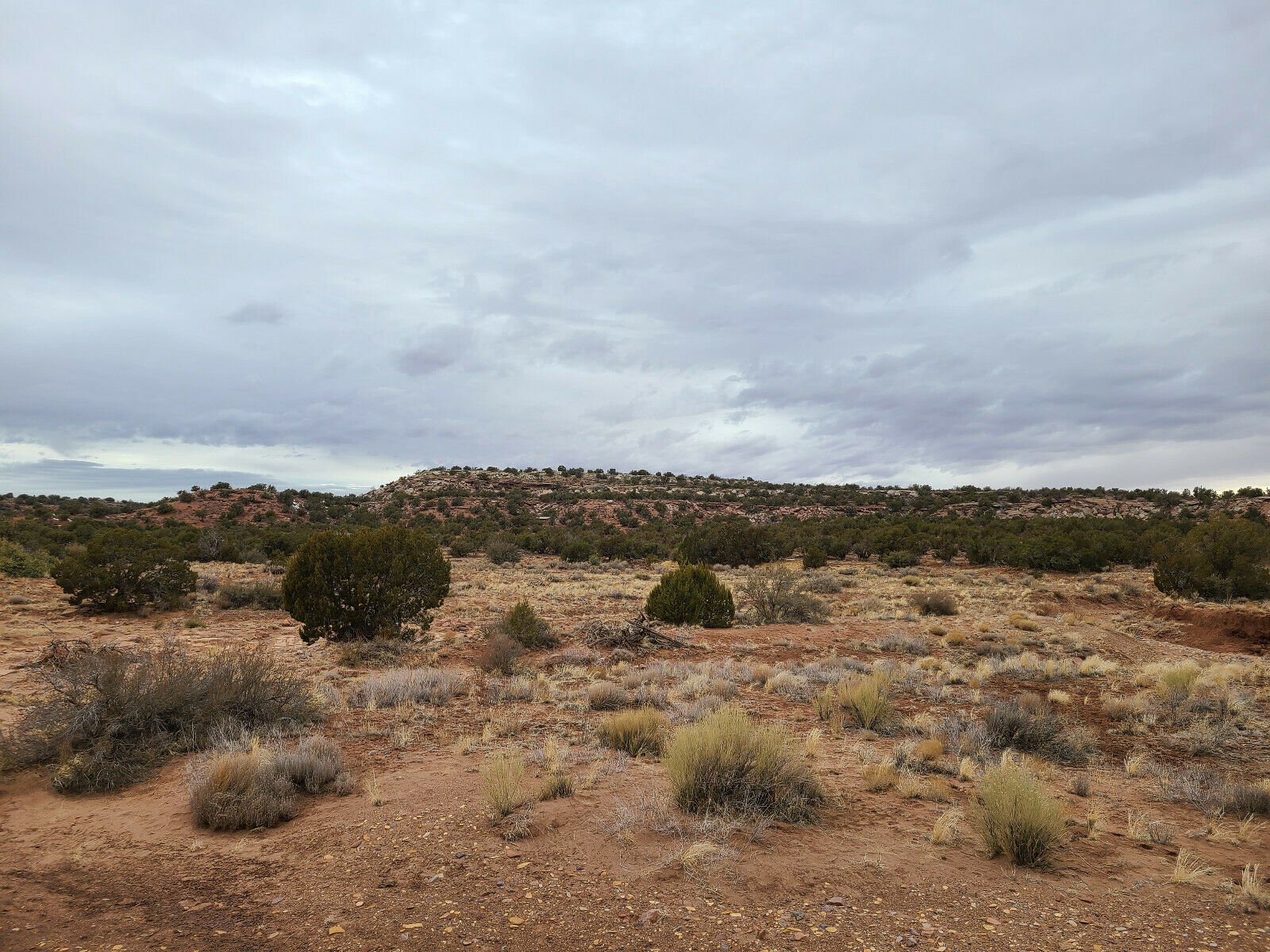 1.10 Acre Lot In Snowflake, AZ Navajo County - Cash Or Finance - $2,225.00