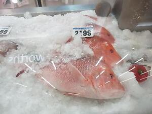 Fish+Chips+FreshFish taking $34,000+ per week 26 years old Brisbane City Brisbane North West Preview