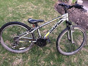 Giant bike 21 speed