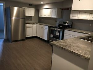 BRAND NEW 3 BEDROOM APARTMENT! Never been lived in!
