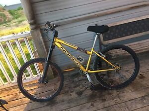 Coustom mountain bike