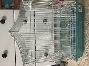 Rodent Cages | Great Deals on Pet Accessories: Everything