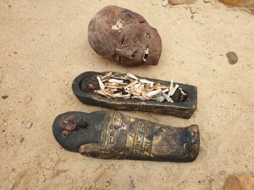 Rare Antique Ancient Egyptian sarkofagus 58 Ushabti+ 1 Ring Servant 2480 BC