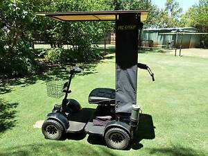 GOLF CART--MiCADDY/ GOPHER -- all in one Singleton Rockingham Area Preview