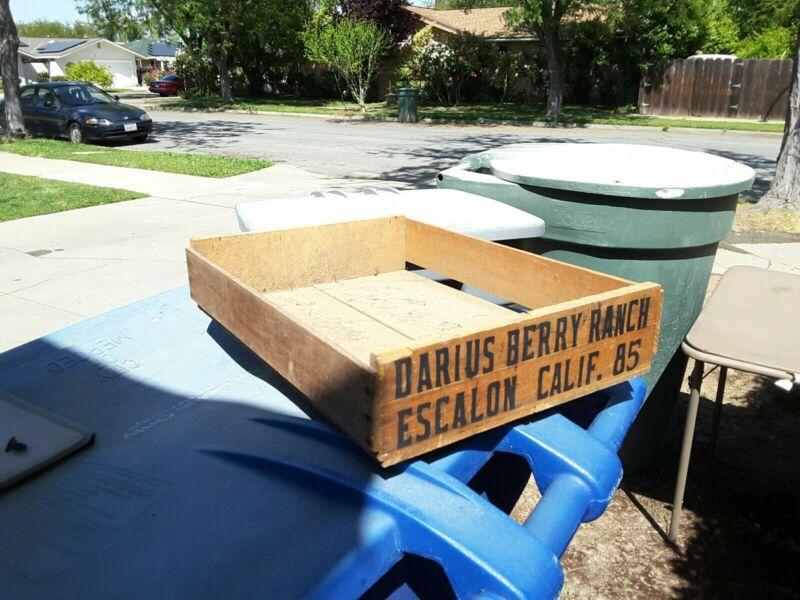 Vintage Wood Fruit Crate Darus Berry Ranch Escalon California Farm Decor Planter