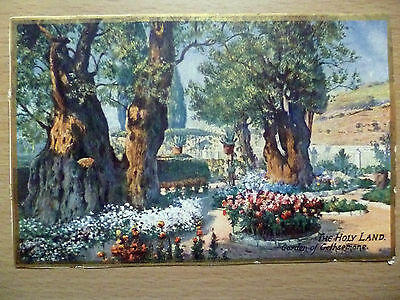 WW1 Period Postcard: The Holy Land: Garden of Gethsemare