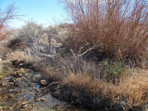 California Gold Mine Silver Lone Pine Placer Mining Claim Au Ag Sluice