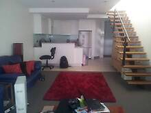 Single room in executive apartment Alexandria Inner Sydney Preview