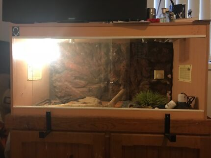 4ft wooden reptile tank with stand