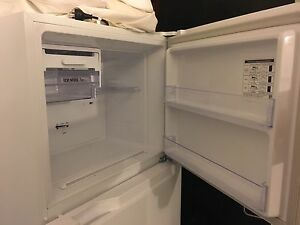 Fridge - 1 year old Somerton Park Holdfast Bay Preview