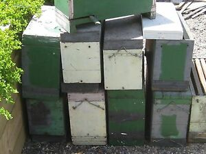 BEE NUC BOXES Yarrambat Nillumbik Area Preview