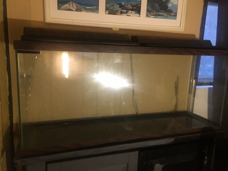 55 gallon fish tank w/ stand