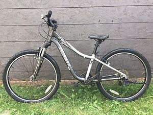 Specialized Hotrock 24 Silver High Quality Youth Bike