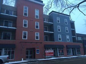 1 bedroom and den rental Strathcona Immediate availability