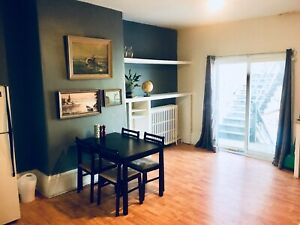 1 Bedroom Apartment in North End