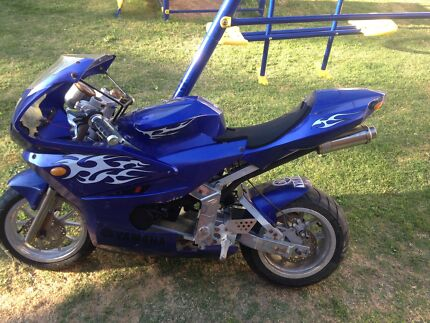 adult sized pocket bike (good condition) Gulfview Heights Salisbury Area Preview