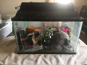 Fish Tank Complete Set up
