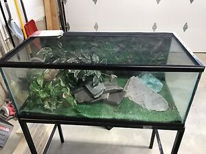 Large terrarium with screen lid