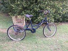 Adult tricycle frame Byron Bay Byron Area Preview