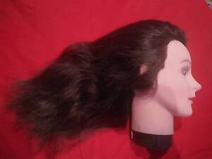 Human Hair mannequin heads x2 Hectorville Campbelltown Area Preview