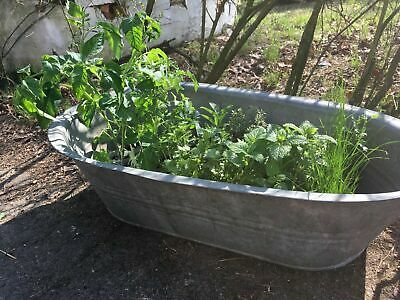 Outstanding Vintage 2-Handled Oval Metal Bath - Planter / Drinks Cooler