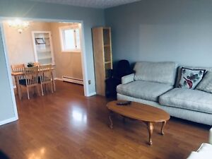Central, Clean, Quiet, Furnished Room for Rent - Avail March 1st