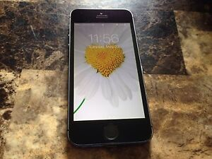 iPhone 5s, 6 months old.