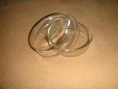 60mm Glass Petri Dish Culture Dishculture Plate20pcslotreusabilitylab Dish
