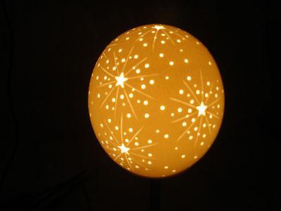 Straußenei Lampe Sternenexplosion Starburst TOP Lampenschirm Straußeneilampe