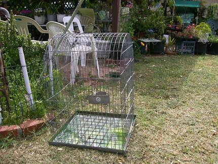 Cocky Cage