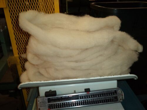 White Washed Texel Wool Roving -   Free Shipping