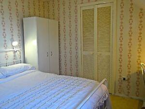 Clean inviting pleasant house share close to AMC, UTAS, city Newnham Launceston Area Preview