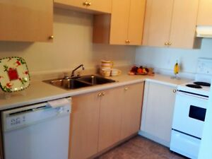 Only $975 With IN-SUITE Laundry! 1 Bedroom Apartment!