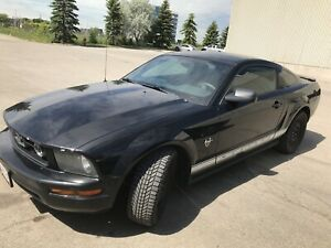 2009 Mustang Special 45 year Edition
