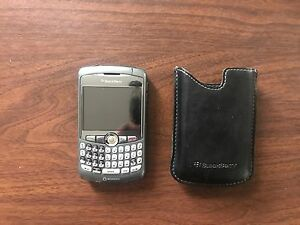 Blackberry Cell with Case