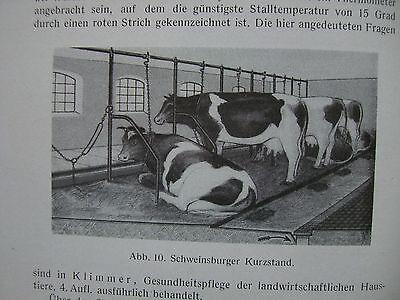 Milchkunde Milchhygiene hygienische Milchüberwachung 1947 Milch Güte
