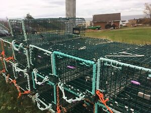 4 foot wire ramp lobster traps