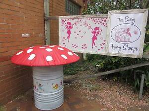 The Berry Fairy Shoppe -  all reasonable offers considered. Berry Shoalhaven Area Preview