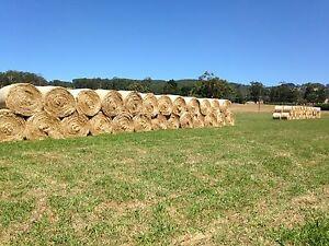 "Hay. Quality 5'6""  Rounds Trafalgar Baw Baw Area Preview"