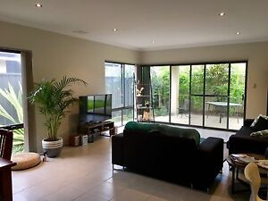 Room for rent in spacious 4 bd house, 300m to the beach & main street. West Busselton Busselton Area Preview