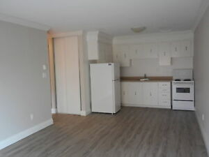 Beautifully Renovated 1 Bedroom