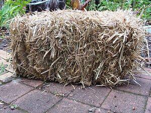 Sugar cane mulch Armidale Armidale City Preview