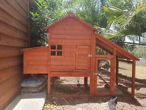 Guinea pigs x2 with beautiful chicken coop house