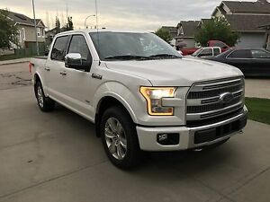 Ford F-150 Platinum - Every Option, Ext'd Warranty, Service Plan